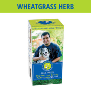 Wheatgrass Herb All Natural Barkin Biscuts Dog Treats